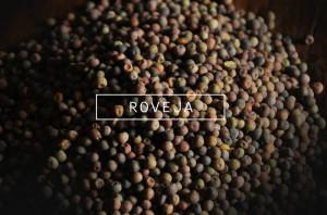 ROVEJA_low